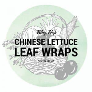 devon mama chinese lettuce leaf wraps recipe idea